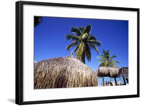 Palm Trees and Palapa Umbrellas Palm Beach Aruba-George Oze-Framed Art Print