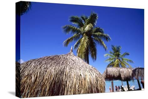 Palm Trees and Palapa Umbrellas Palm Beach Aruba-George Oze-Stretched Canvas Print