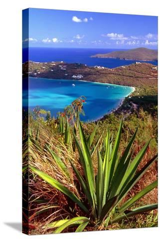 Aerial View, Magens Bay, St Thomas, USV-George Oze-Stretched Canvas Print