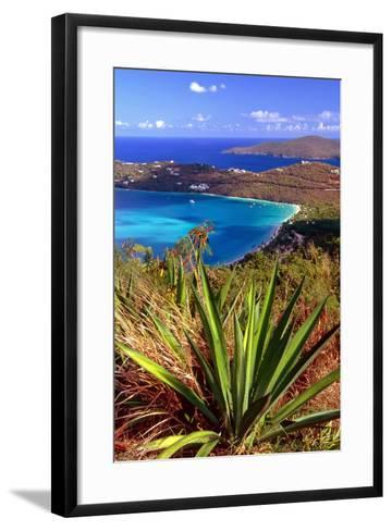 Aerial View, Magens Bay, St Thomas, USV-George Oze-Framed Art Print