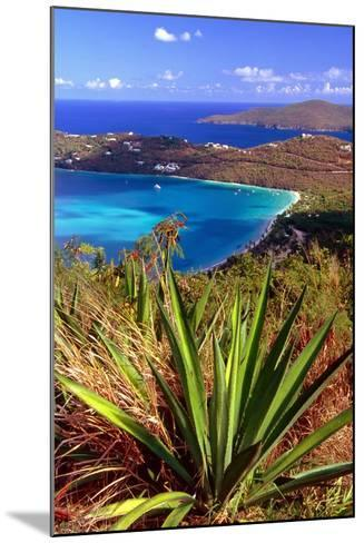 Aerial View, Magens Bay, St Thomas, USV-George Oze-Mounted Photographic Print