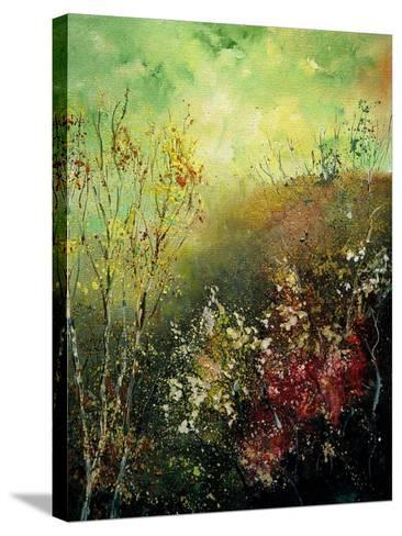 Birch Trees in Fall-Pol Ledent-Stretched Canvas Print