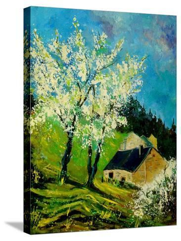 Blooming Prune Trees-Pol Ledent-Stretched Canvas Print