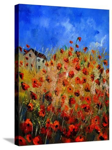 Red Poppies 562111-Pol Ledent-Stretched Canvas Print