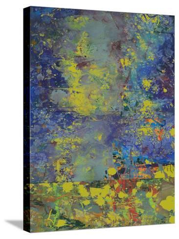 Starry Night-Ricki Mountain-Stretched Canvas Print