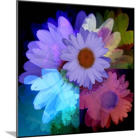 Daisies In Color-Ruth Palmer-Mounted Art Print