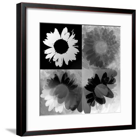 Daisies In Black And White-Ruth Palmer-Framed Art Print
