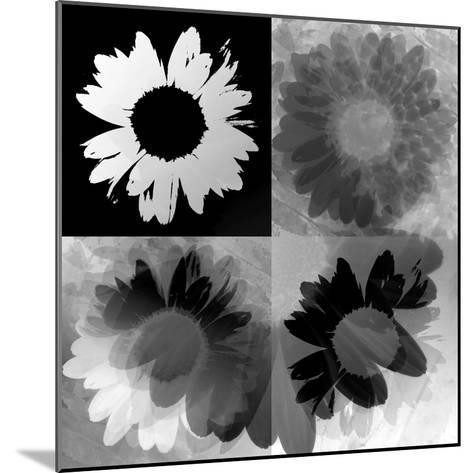 Daisies In Black And White-Ruth Palmer-Mounted Art Print