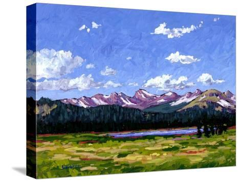 Continental Divide As It Cuts Through Boulder Cnty-Patty Baker-Stretched Canvas Print