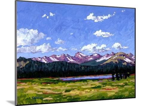 Continental Divide As It Cuts Through Boulder Cnty-Patty Baker-Mounted Art Print