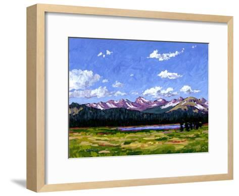 Continental Divide As It Cuts Through Boulder Cnty-Patty Baker-Framed Art Print