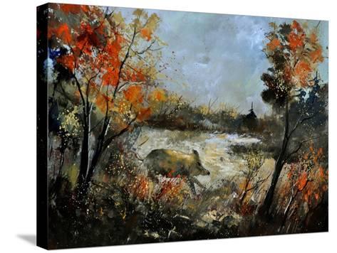 Wild Boar 56-Pol Ledent-Stretched Canvas Print