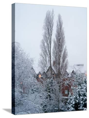 Winter Suburb-Charles Bowman-Stretched Canvas Print