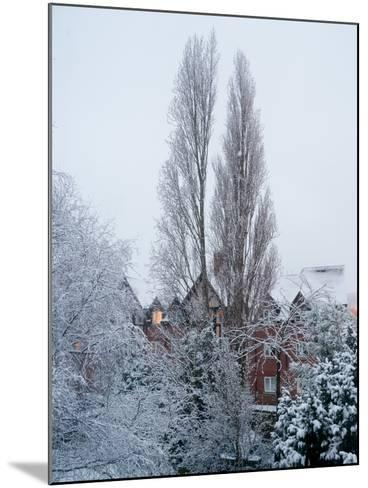 Winter Suburb-Charles Bowman-Mounted Photographic Print
