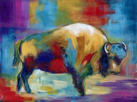 American Buffalo-Marilyn Dunlap-Stretched Canvas Print
