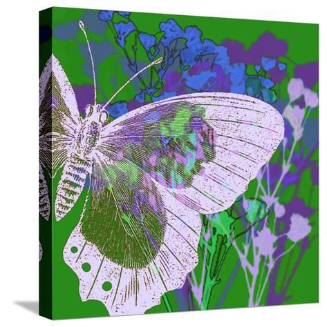 Butterfly Frenzey-Ricki Mountain-Stretched Canvas Print