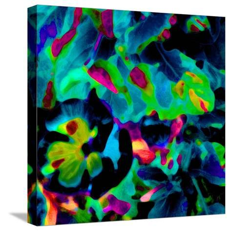 Blooming Blue Abstract-Ruth Palmer-Stretched Canvas Print