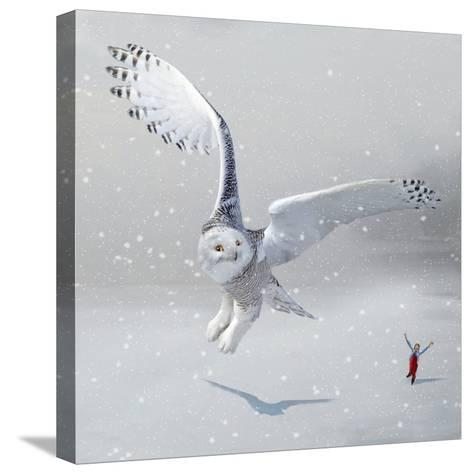 If You Were An Owl-Nancy Tillman-Stretched Canvas Print