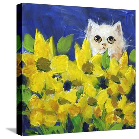 Gold Eye White Persian in Yellow Flowers-sylvia pimental-Stretched Canvas Print