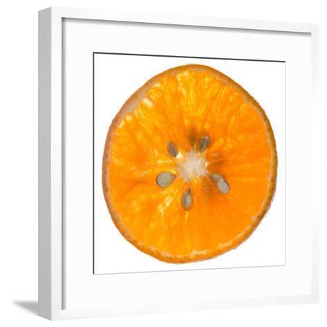 Orange Slice-Steve Gadomski-Framed Art Print