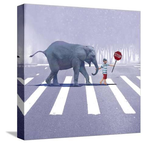 Elephant Crossing-Nancy Tillman-Stretched Canvas Print