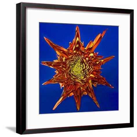 Chrysanthemum Explosion-Charles Bowman-Framed Art Print