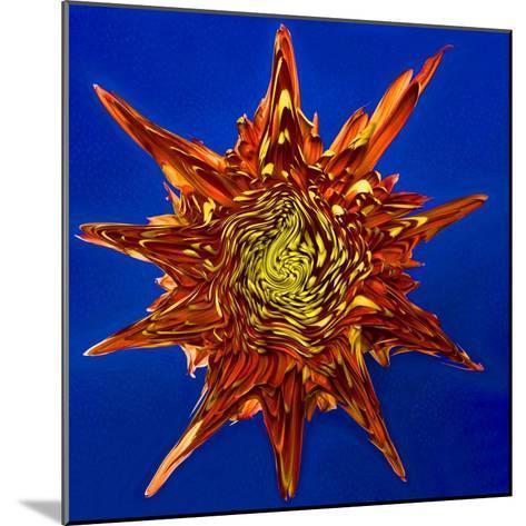 Chrysanthemum Explosion-Charles Bowman-Mounted Photographic Print