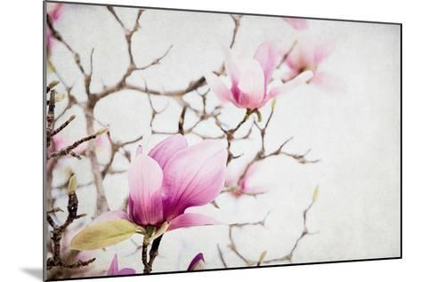 Spring is In the Air I-Elizabeth Urquhart-Mounted Photo