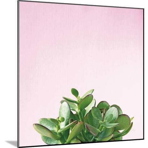 Succulent Simplicity III on Pink-Felicity Bradley-Mounted Photo