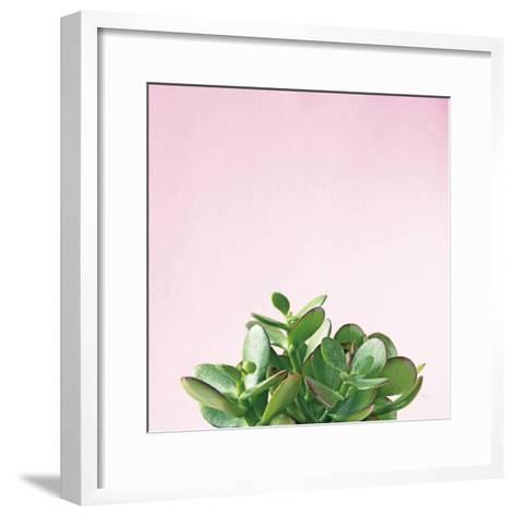 Succulent Simplicity III on Pink-Felicity Bradley-Framed Art Print