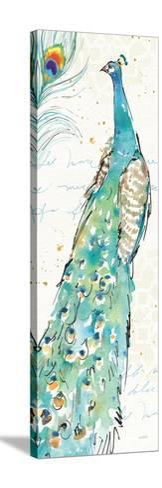 Peacock Garden III-Anne Tavoletti-Stretched Canvas Print