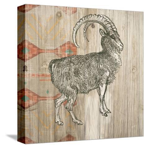 Natural History Lodge Southwest VII-Wild Apple Portfolio-Stretched Canvas Print