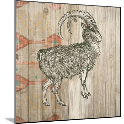 Natural History Lodge Southwest VII-Wild Apple Portfolio-Mounted Art Print