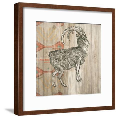 Natural History Lodge Southwest VII-Wild Apple Portfolio-Framed Art Print