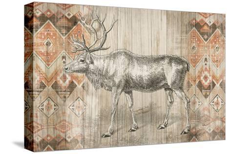 Natural History Lodge Southwest IX-Wild Apple Portfolio-Stretched Canvas Print