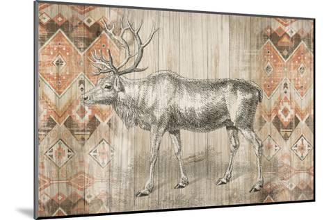 Natural History Lodge Southwest IX-Wild Apple Portfolio-Mounted Art Print