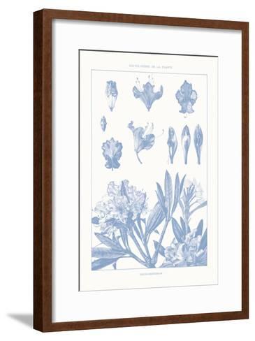 Serenity Rhododendron on White-Wild Apple Portfolio-Framed Art Print