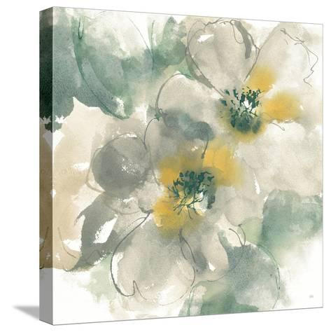 Silver Quince I on White-Chris Paschke-Stretched Canvas Print