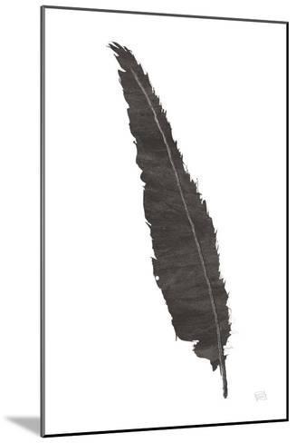 Black Feather VI-Chris Paschke-Mounted Art Print
