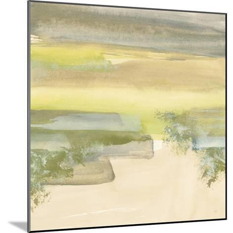 Grey Stone IV-Chris Paschke-Mounted Art Print