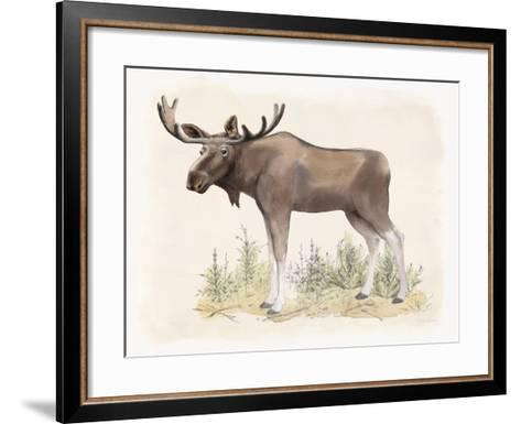 Wilderness Collection Moose-Beth Grove-Framed Art Print