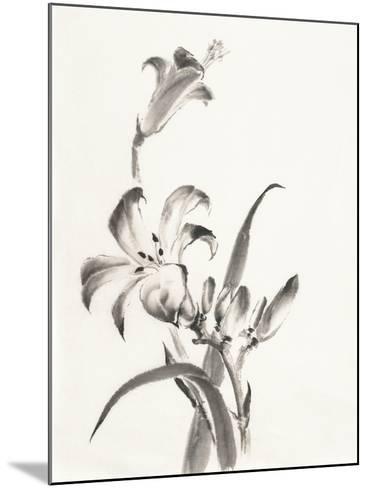 Sumi Daylily II-Chris Paschke-Mounted Art Print