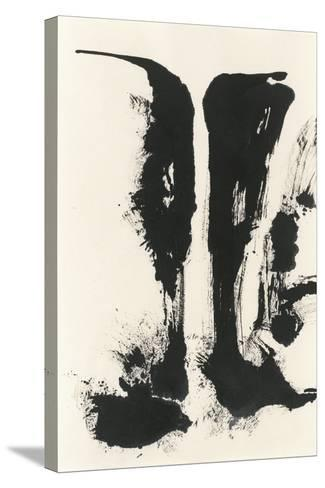 Sumi Waterfall View V-Chris Paschke-Stretched Canvas Print