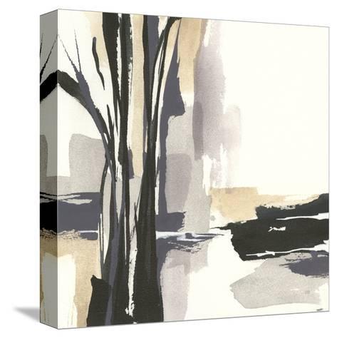 Placid I-Chris Paschke-Stretched Canvas Print