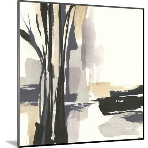 Placid I-Chris Paschke-Mounted Art Print
