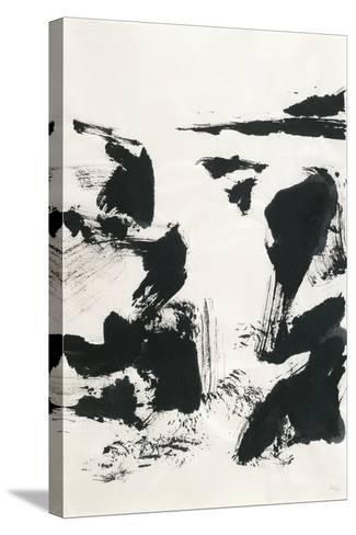 Sumi Waterfall VI-Chris Paschke-Stretched Canvas Print