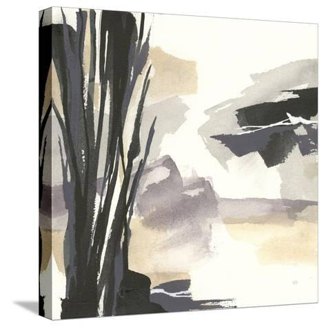 Placid II-Chris Paschke-Stretched Canvas Print