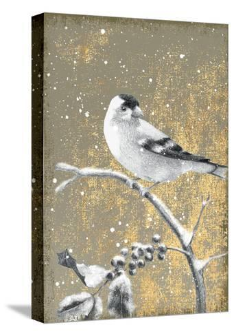 Winter Birds Goldfinch Neutral-Beth Grove-Stretched Canvas Print