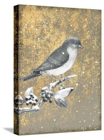 Winter Birds Bluebird Neutral-Beth Grove-Stretched Canvas Print