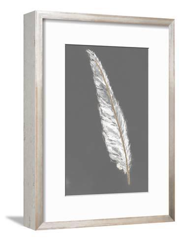 Gold Feathers VI on Grey-Chris Paschke-Framed Art Print